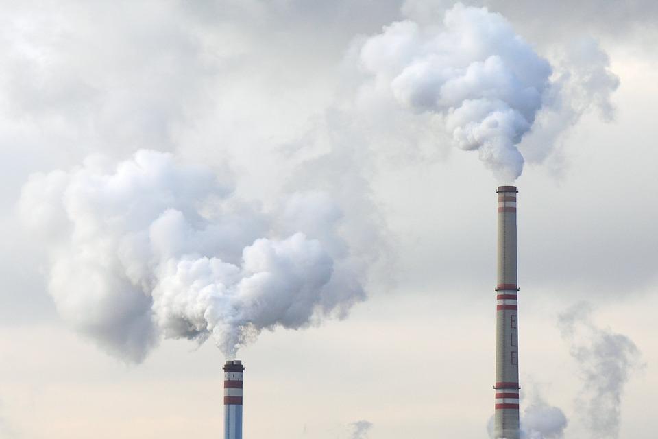 charbon-ecocombust-jpg