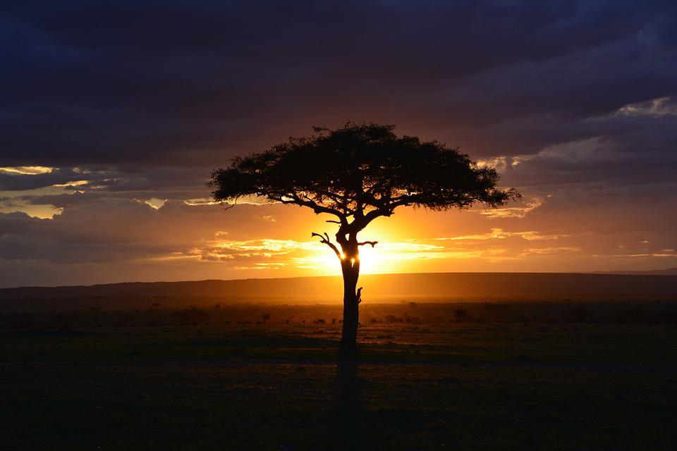energie-afrique-solaire-jpg
